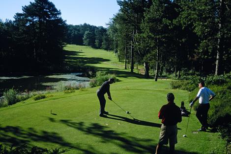 Faites votre choix parmi les deux terrains de golf à 4 Km